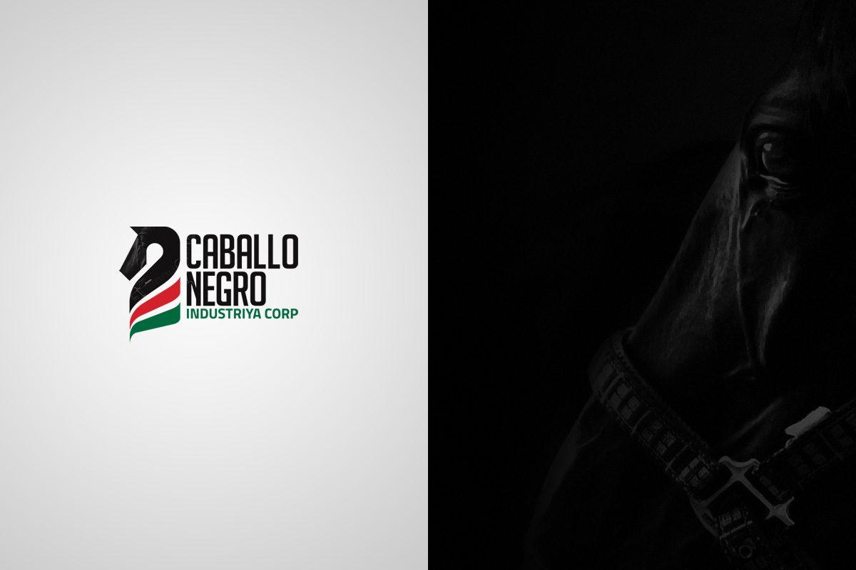 Portfolio – Caballo Negro